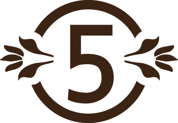 FivePoints_Favicon